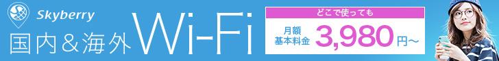 skyberry 国内&海外WiFi